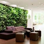 Тази стена е като малка джунгла в дома ви. Зеленината не е изкуствена. Ще дам подробности в следващите постове.